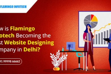 How is Flamingo Becoming The Best Website Designing Company in Delhi?