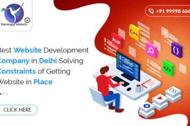 Best Website Development Company in Delhi Solving Constraints of Getting Website in Place