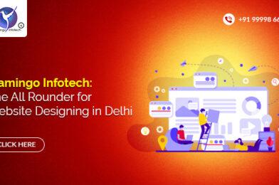 Flamingo Infotech: The All Rounder for Website Designing in Delhi